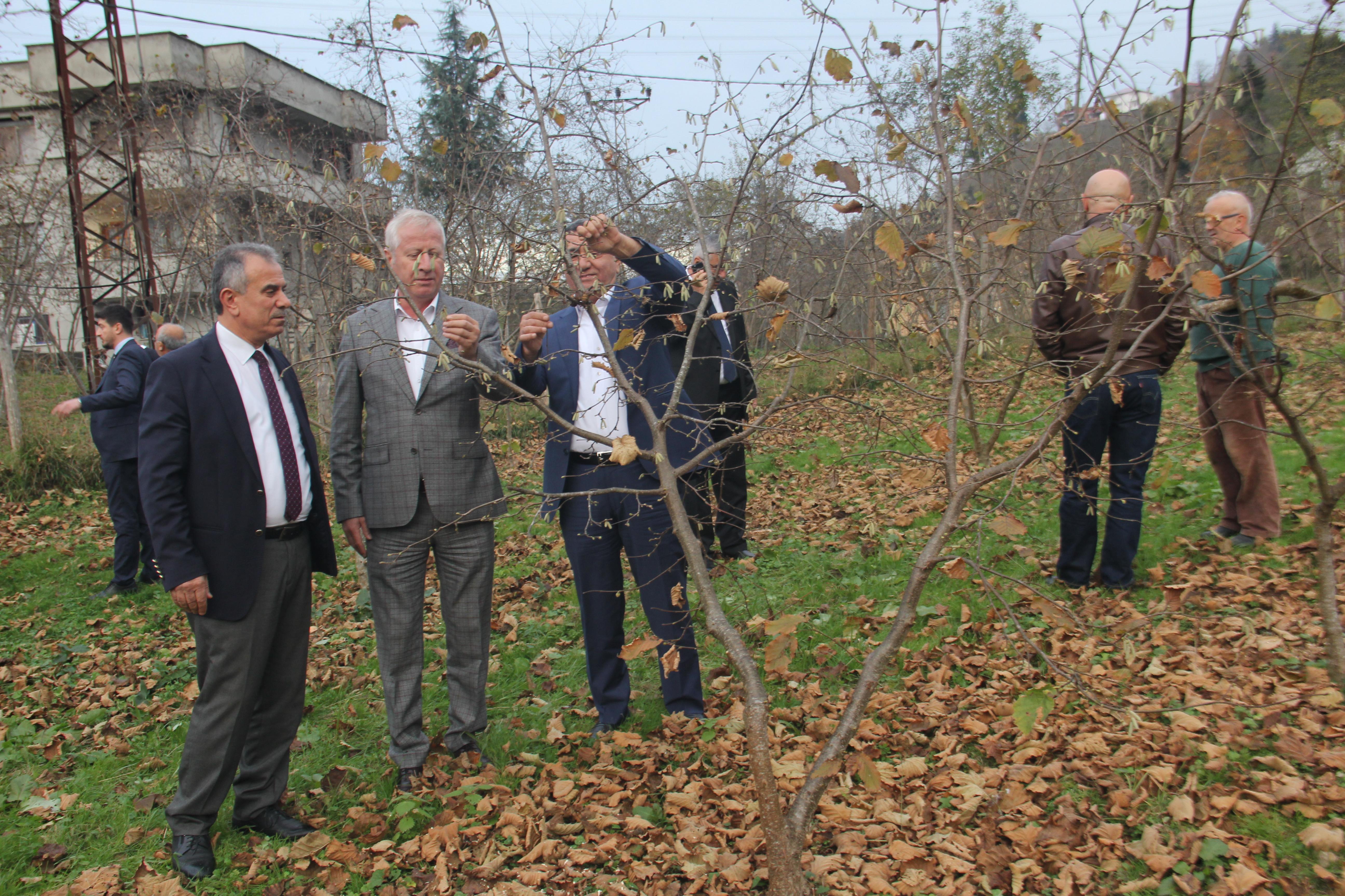Sakarya Ticaret Borsası heyeti, Trabzon'da örnek bahçeleri gezdi
