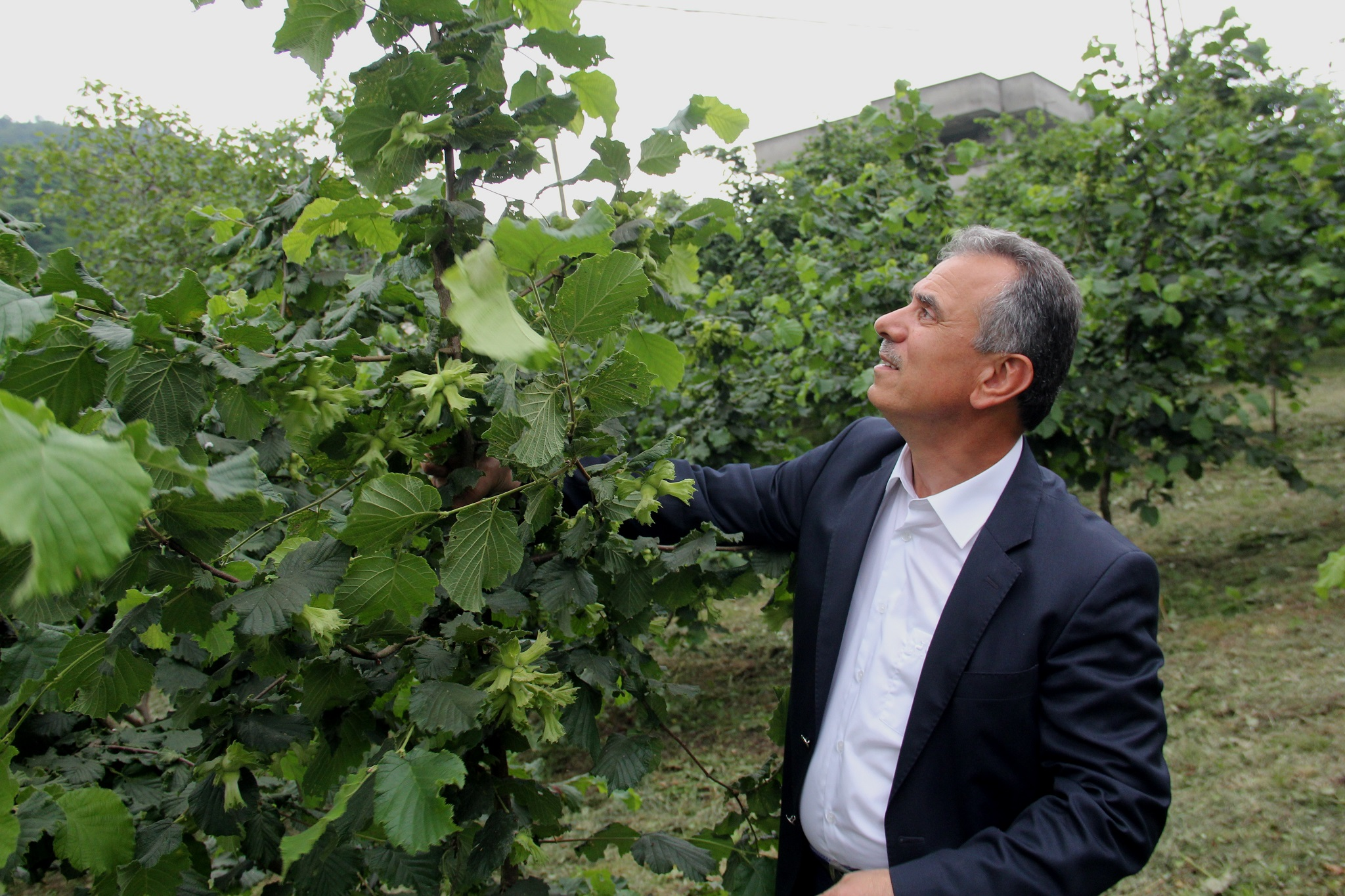 """TTB Başkanı Ergan; """"Üretimi teşvik edici bir fiyat"""""""