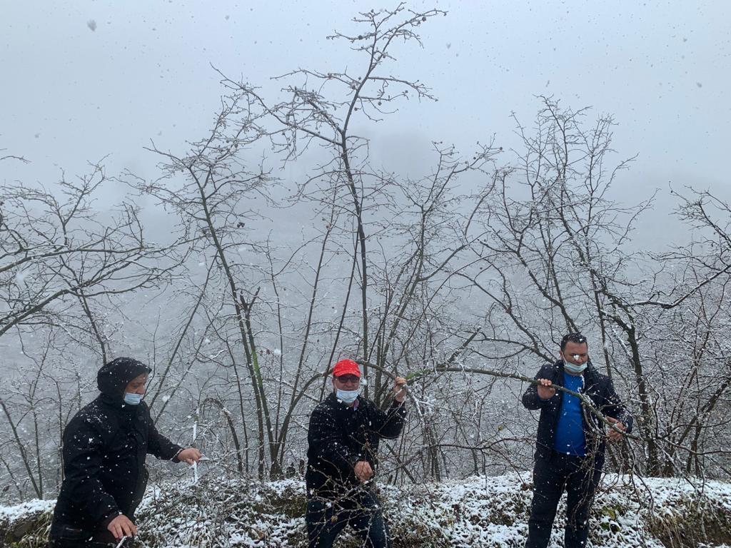 Meclis Başkanı Arslantürk,fındık bahçelerindeki tespitlerini karlı havaya rağmen sürdürüyor