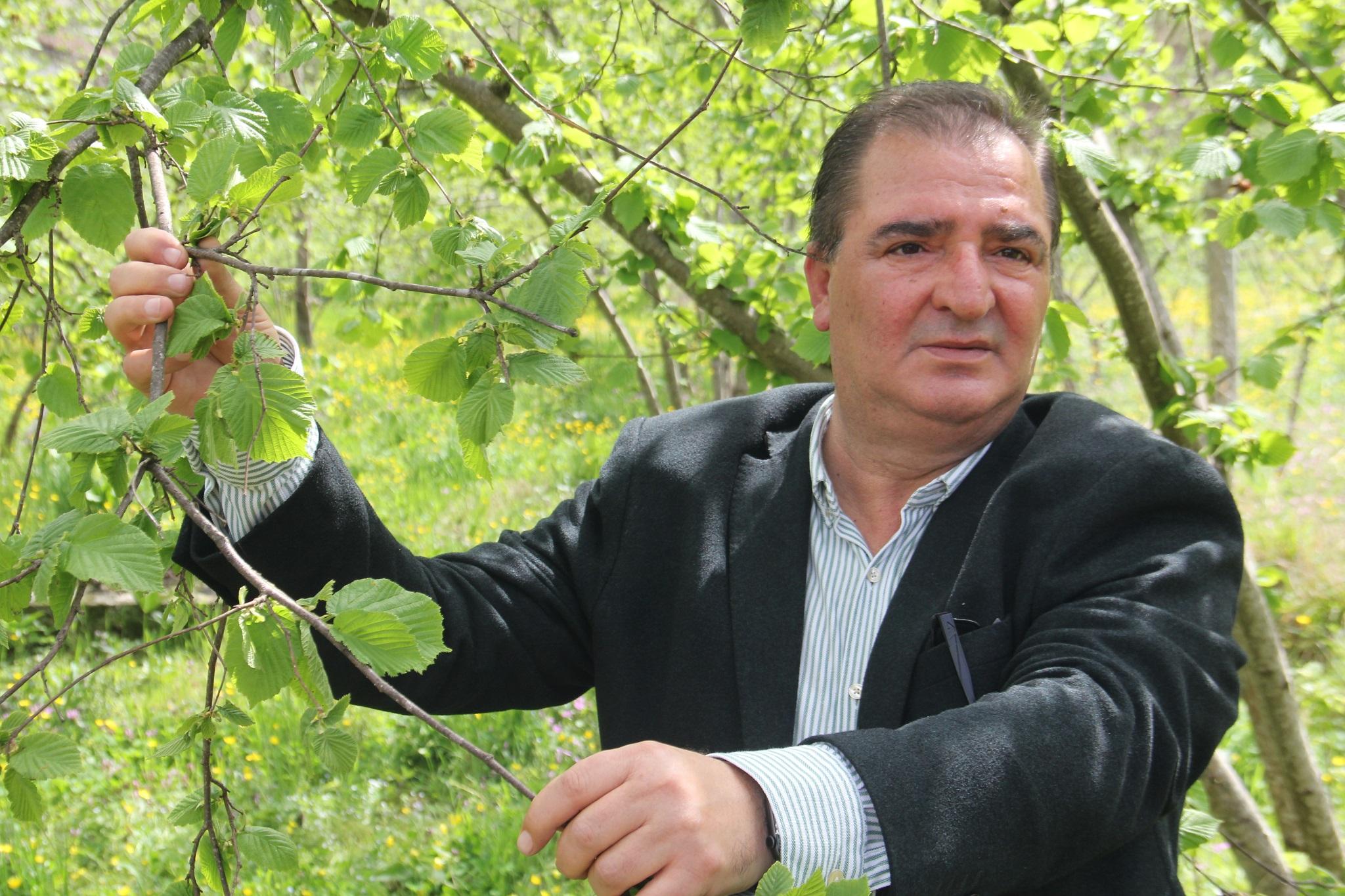 """TTB Meclis Başkanı Arslantürk, """"Fındık fiyatının siyasete, dolayısıyla sandığa etkisi hiç olmamıştır, olmayacaktır da."""""""
