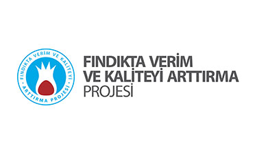 FINDIKTA VERİM VE KALİTEYİ ARTTIRMA PROJESİ